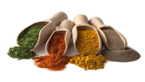 Bristol Spices and Herbs